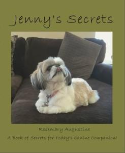Jenny's Secrets - Front Cover.