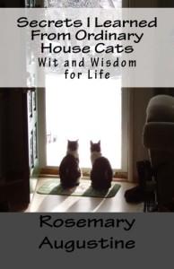 Secrets I Learned - Book Cover.