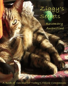 Ziggy's Secrets - Front Cover Final.